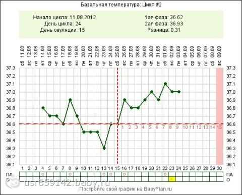 Температура при месячных 37 2 95