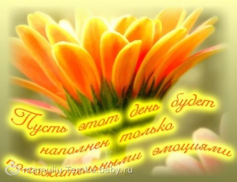 ... доброе утро и хорошего дня - на бэби.ру: www.baby.ru/blogs/post/175990552-175371510