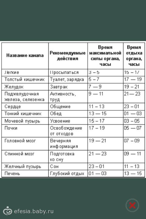 таблица сколько перевариваются продукты
