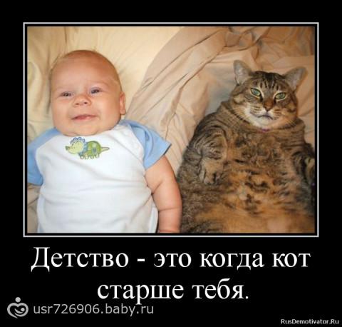 Про мужиков, котов, детей... Короче, демики !