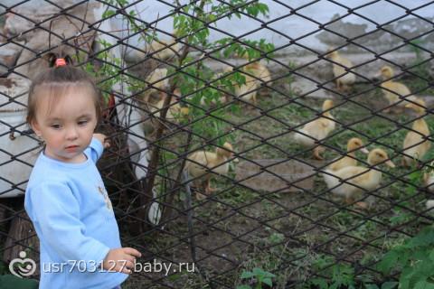 поездка в деревню,обещанные фотки подружки)))(их маленькая часть)