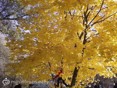 Осення прогулка + фотографии))))