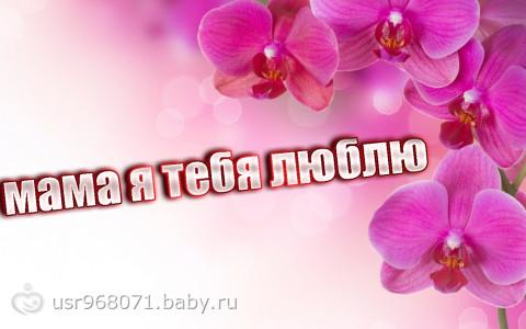 картинки мама тебя люблю