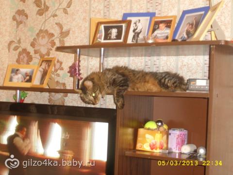 рассказик про мою кошечку =) Продолжение