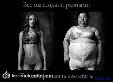 ОБОИ 11 PRO - Энциклопедия ремонта | 325x446