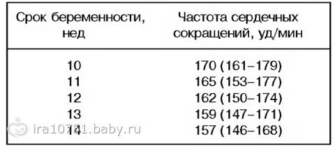 Расшифровка первого УЗИ в 10-14 недель